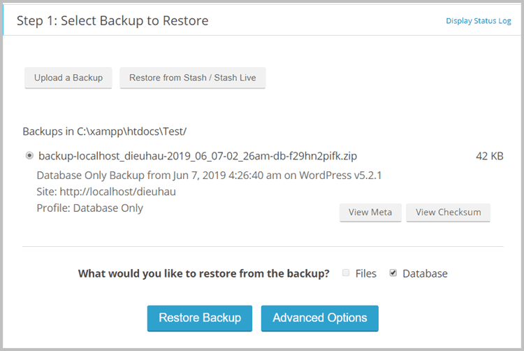 Select-Backup-to-Restore-BackupBuddy