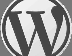 """Cách Thay Dòng Chữ """" Enter Title Here"""" Trong WordPress"""
