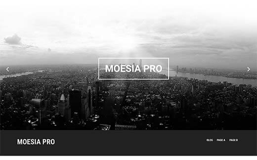 moesia-pro