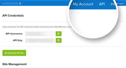 Bạn có thê tìm thấy thông tin API dưới tài khoản của mình trên website của OptinMonster