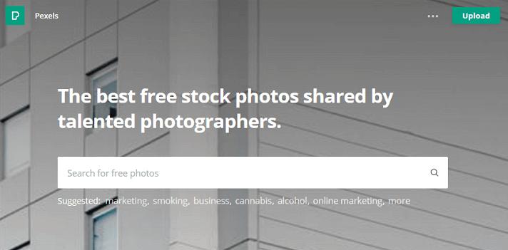 pexels-free-stock-photo