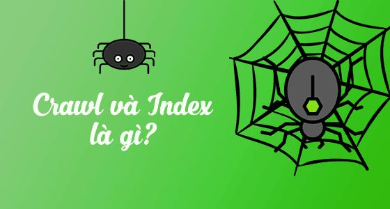 Crawl và Index là gì – Google đang thu thập thông tin website như thế nào?