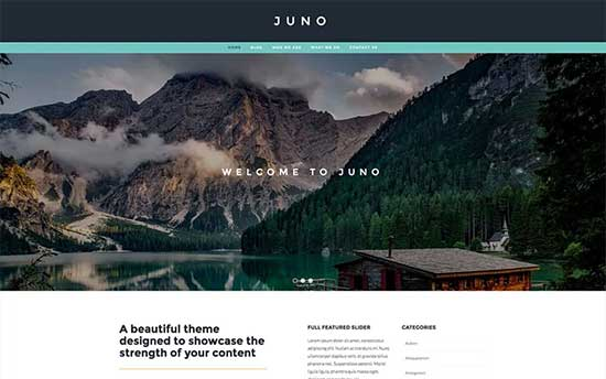 Juno-theme