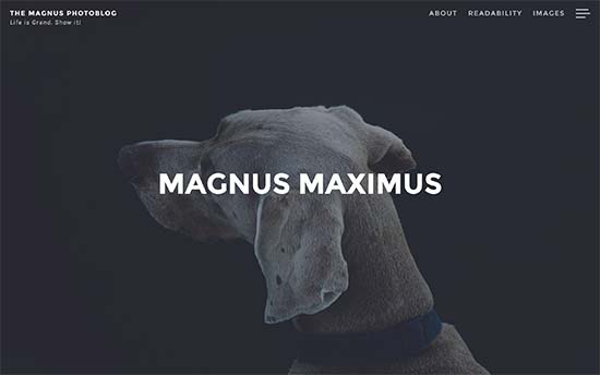 Magnus-theme