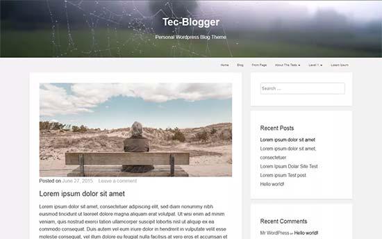 Tecblogger-theme