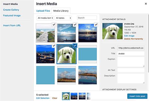 sửa lỗi hình ảnh thường gặp trong WordPress