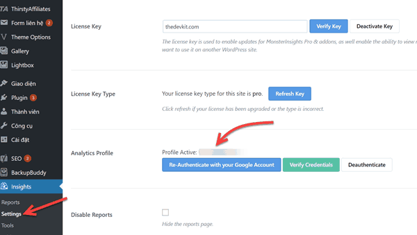 authenticate-google-analytics-monsterinsights