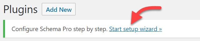 start-setup-wizard-schema-pro
