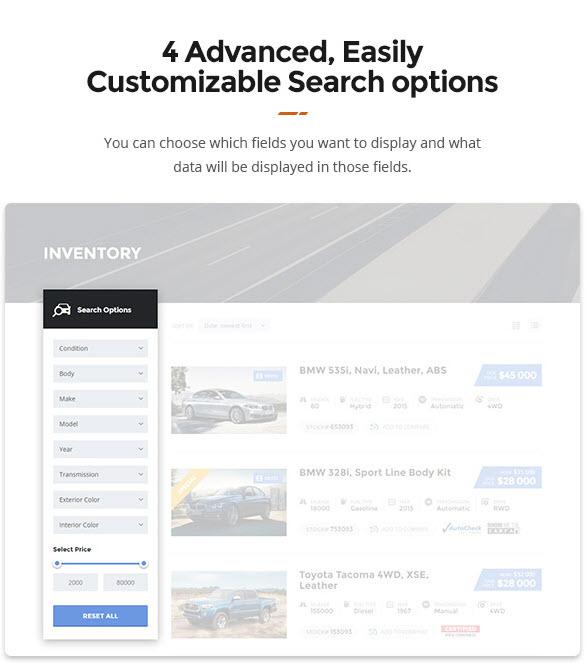 Search-Options-Motors-theme