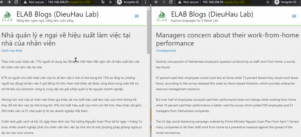 Ví dụ nội dung website đa ngôn ngữ được viết bởi Polylang