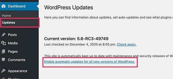 enable-updates-wordpress